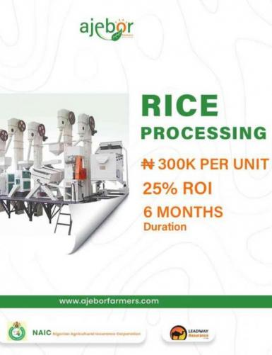 Invest in Rice Processing 2.0